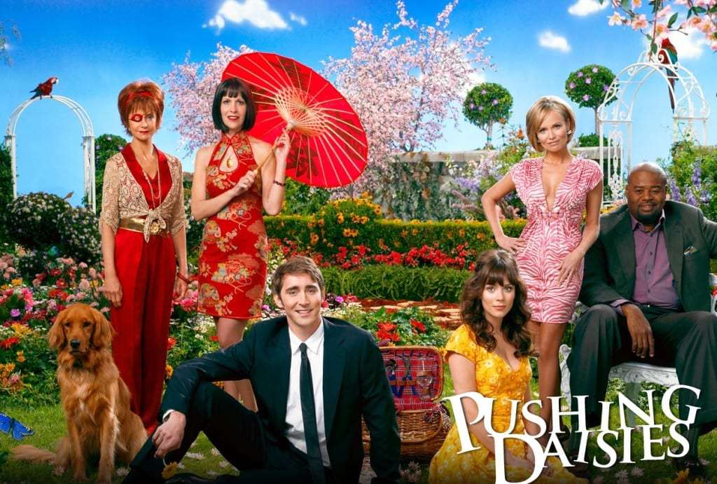 pushing_daisies_wallpaper_3-1280x1024