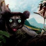 Lemury z Madagaskaru 3D – vlog o Imax + recenzja